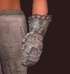 Seer's Rustic Handguards (Equipped)