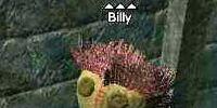 Billy (Nektropos)