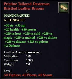File:Pristine Tailored Dexterous Bristled Leather Bracers.jpg