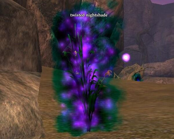 File:Twisted nightshade (Visible).jpg