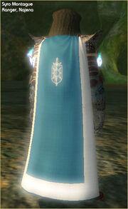 Cloak of Valor (worn)