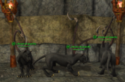 Displacer Beast (Wizard) Placed