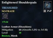 Enlightened Shoulderpads