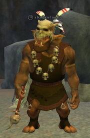 A Krulkiel mystic