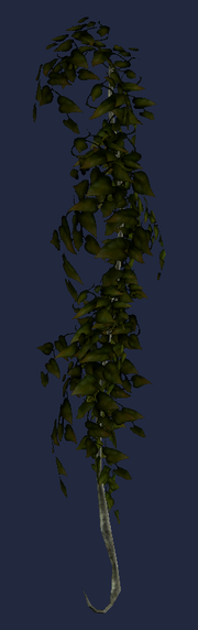 Dark Hanging Vine (Visible)