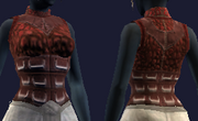 Blood Drenched Vest (Equipped)