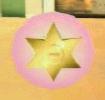 Estrella policial