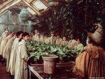 Herbology88.jpg