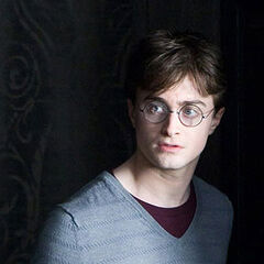 Harry Potter, campeón de Hogwarts