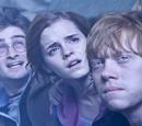 HarryPotter Wiki