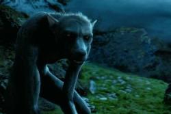 250px-Werewolf.jpg