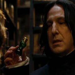 Severus Snape, Pociones (1981-1996)