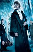 Harry potter and the goblet of fire 2005 57 poster