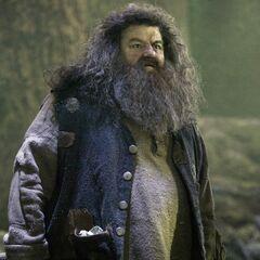 Rubeus Hagrid, Cuidado de Criaturas Mágicas (1993-?)