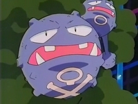 Archivo:EP038 Weezing.png