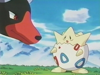 Archivo:EP182 Houndoom y Togepi (2).png