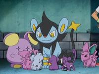 Archivo:EP578 Pokémon.png