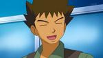 Pokémon de Brock