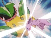 EP228 Espeon de sakura usando ataque rápido.jpg