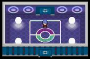 Liga Pokémon (Sinnoh) Sala Delos Pt