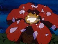 Archivo:EP187 Flor de Venusaur iluminada.png
