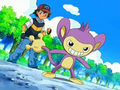 EP510 Ash y Aipom.png