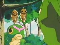 Archivo:EP146 Kakuna, Caterpie y Metapod de Bugsy.jpg