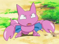 Archivo:EP554 Gligar (2).png