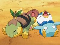 Archivo:EP569 Turtwig, Piplup y Buneary agotados.png