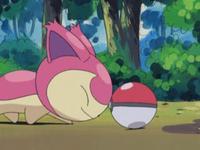 Archivo:EP323 Skitty tocando la Pokéball.png