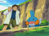 Archivo:EP277 Abedul y Mudkip.png