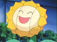 Archivo:EP137 Sunflora (2).png