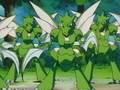 EP099 Manada de Scyther.png