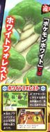 Scan CoroCoro Bosque Blanco