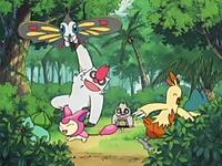 Archivo:EP409 Pokémon de May jugando.png