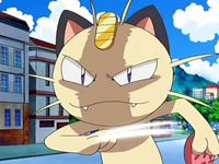 Archivo:EP572 Meowth tras usar golpes furia.png