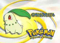EP119 Pokemon.png