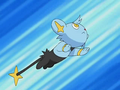 EP557 Shinx de Angie.png