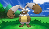 Diggersby Pokemon XY