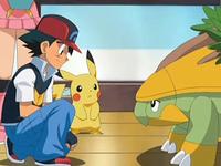 Archivo:EP569 Ash hablando con Grotle.png