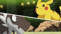 EP829 Pikachu VS Tyrunt
