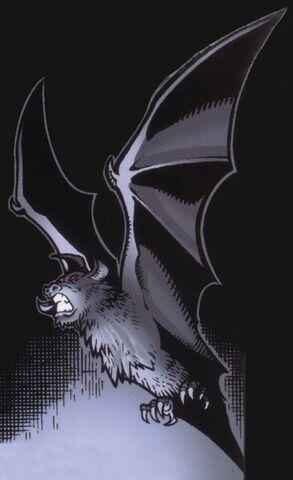 Archivo:Ruusan Bat.jpg