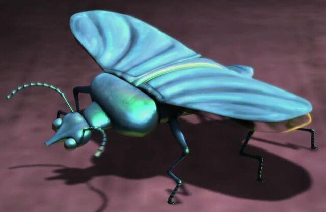 Archivo:Slug-beetle2.jpg