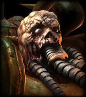 Paladin de la plaga, avatar