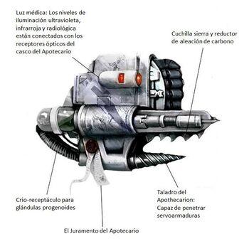 Narthecium Piezas traducido.jpg