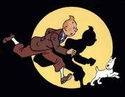 Tintin.jpg