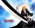 Bleach Spotlight.jpg
