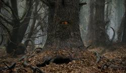Demonic Tree (1)