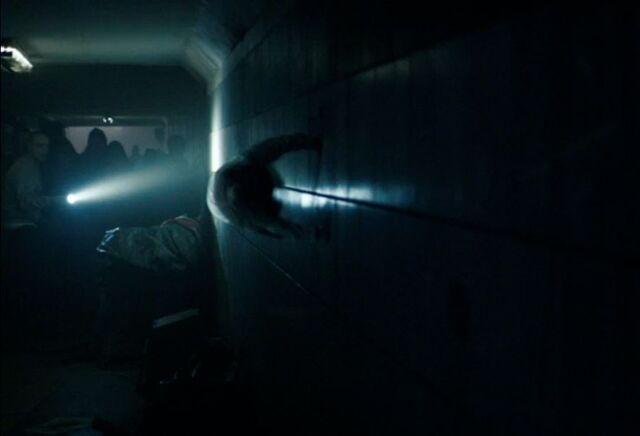 File:Casey running on wall.JPG
