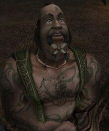 Knothole Glade Chief